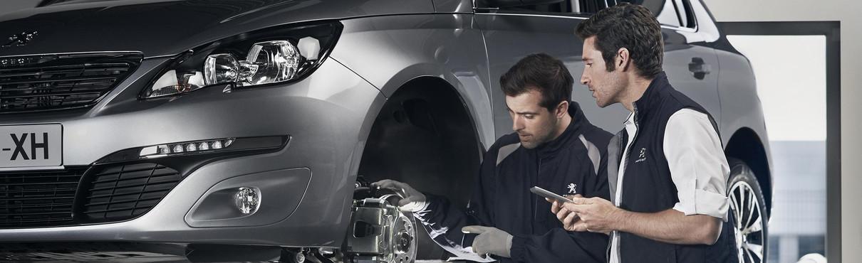 Peugeot - Basisbeurt Economy